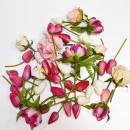 Flores Decoracion del Hogar